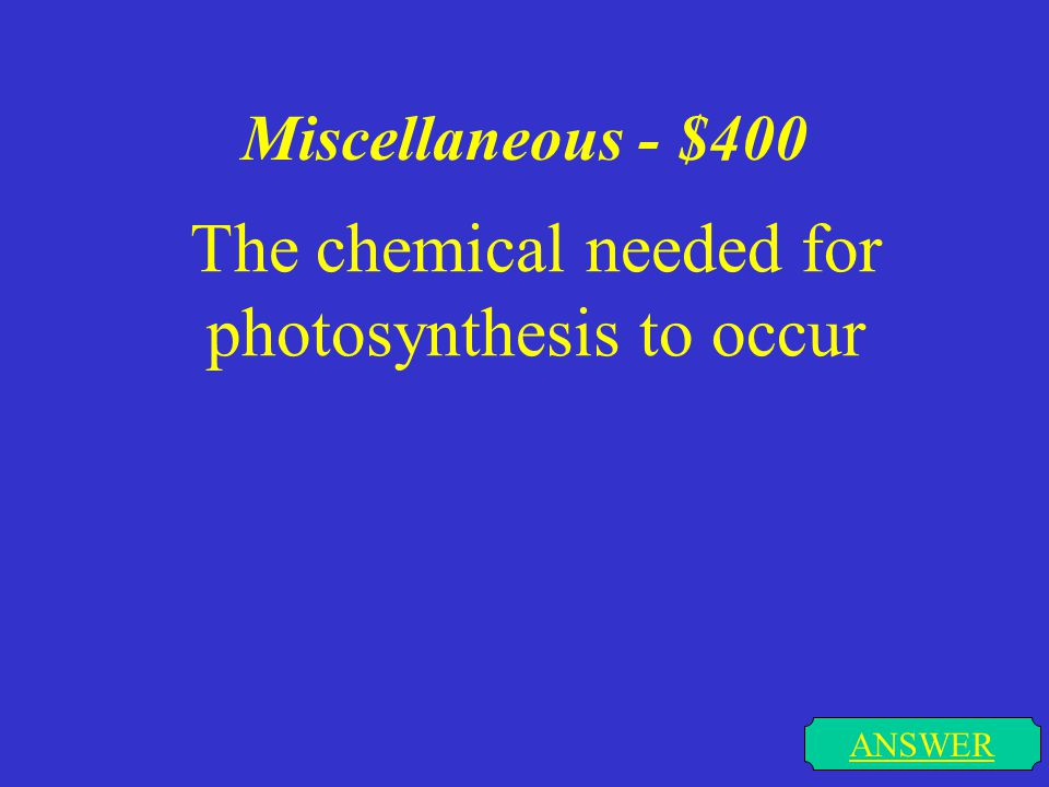 Miscellaneous - $300 ANSWER The process of turning sunlight to energy