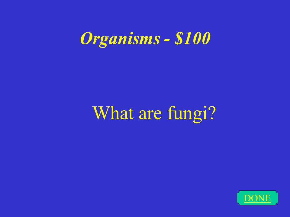 Organelles - $500 DONE What are the mitochondria