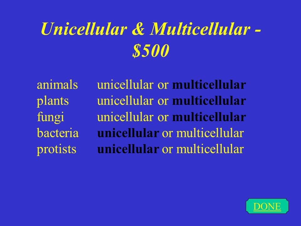 Unicellular & Multicellular - $400 DONE What is diffusion