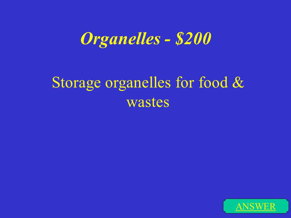 Organelles - $100 Structures found in the cytoplasm of a cell. ANSWER