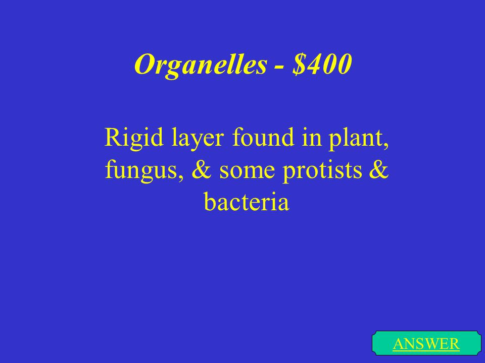 Organelles - $300 ANSWER Jelly like substance that supports the cell organelles in a cell