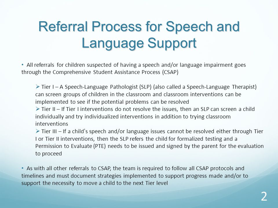 SPEECH AND LANGUAGE SUPPORT SERVICES IN THE SCHOOL DISTRICT OF PHILADELPHIA 1