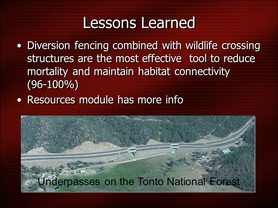 Lessons Learned Diversion fencing combined with wildlife crossing structures are the most effective tool to reduce mortality and maintain habitat connectivity (96-100%) Resources module has more info Underpasses on the Tonto National Forest