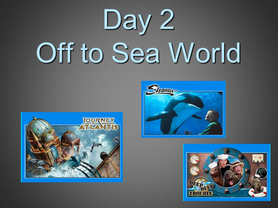 Day 2 Off to Sea World