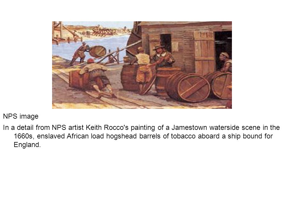 NPS image In a detail from NPS artist Keith Rocco s painting of a Jamestown waterside scene in the 1660s, enslaved African load hogshead barrels of tobacco aboard a ship bound for England.