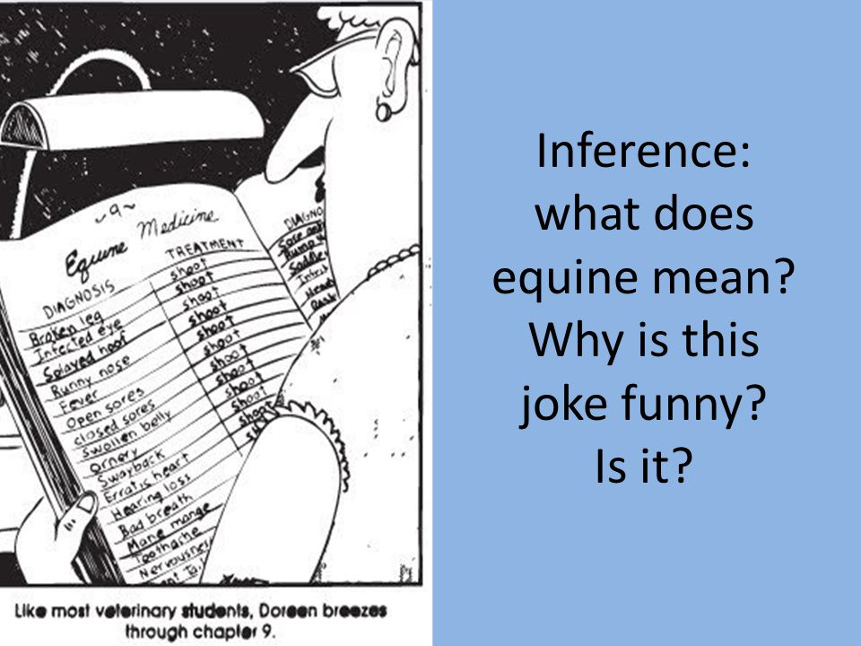 Inference: what does equine mean Why is this joke funny Is it
