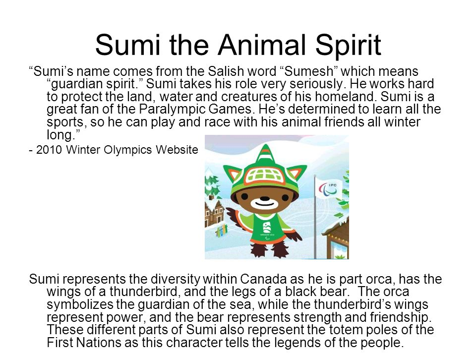 Sumi the Animal Spirit Sumi's name comes from the Salish word Sumesh which means guardian spirit. Sumi takes his role very seriously.