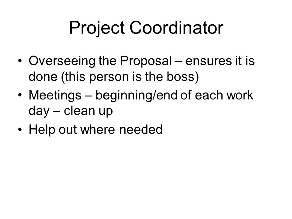 Project Coordinator Overseeing the Proposal – ensures it is done (this person is the boss) Meetings – beginning/end of each work day – clean up Help out where needed