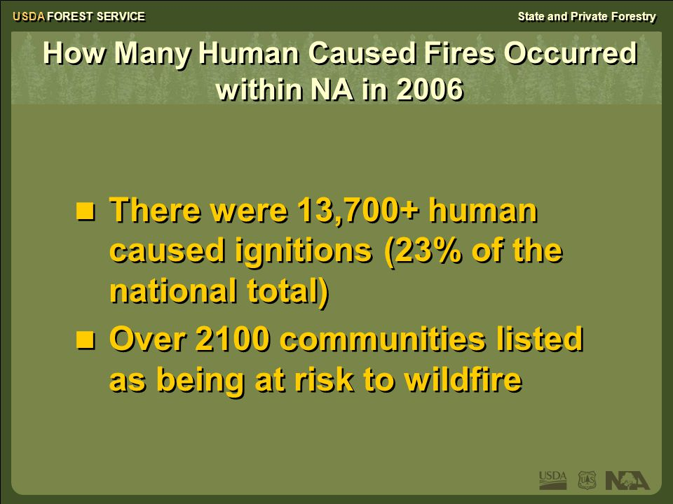 USDA FOREST SERVICEState and Private Forestry How Many Human Caused Fires Occurred within NA in 2006 There were 13,700+ human caused ignitions (23% of the national total) Over 2100 communities listed as being at risk to wildfire There were 13,700+ human caused ignitions (23% of the national total) Over 2100 communities listed as being at risk to wildfire