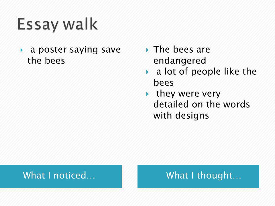 What I noticed… What I thought…  a poster saying save the bees  The bees are endangered  a lot of people like the bees  they were very detailed on the words with designs