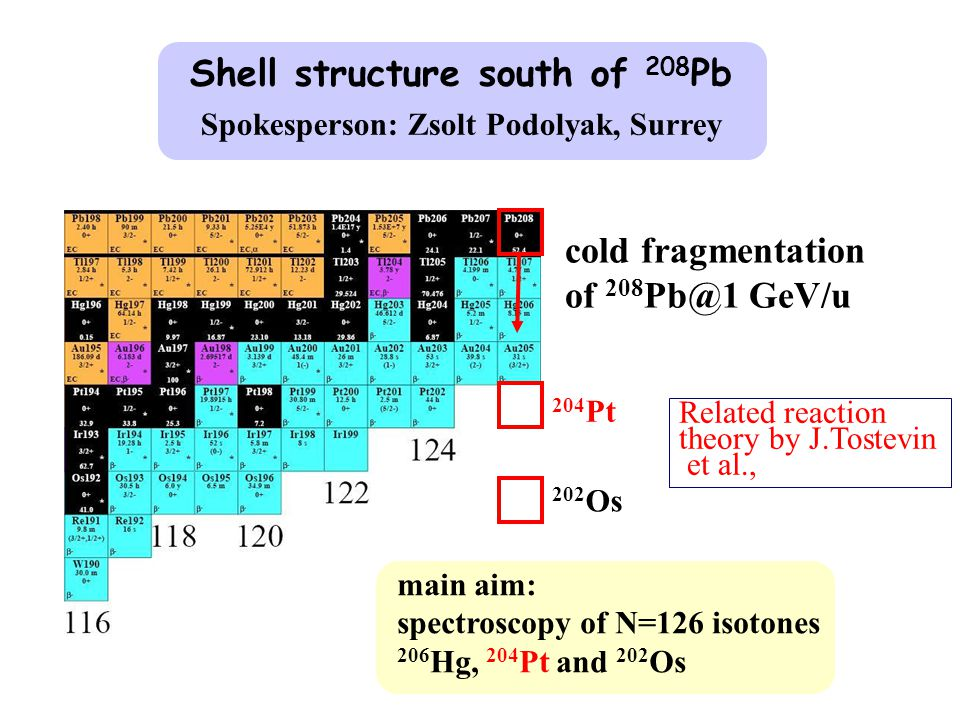 Shell structure south of 208 Pb Spokesperson: Zsolt Podolyak, Surrey cold fragmentation of 208 Pb@1 GeV/u main aim: spectroscopy of N=126 isotones 206 Hg, 204 Pt and 202 Os 204 Pt 202 Os Related reaction theory by J.Tostevin et al.,