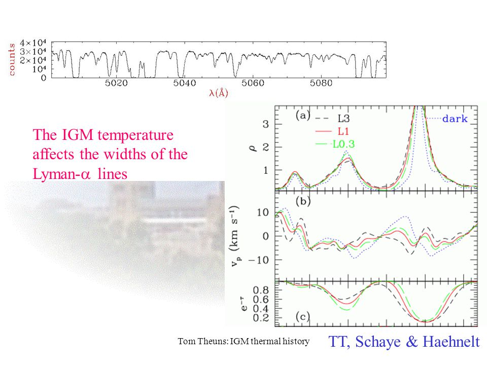 The IGM temperature affects the widths of the Lyman-  lines TT, Schaye & Haehnelt