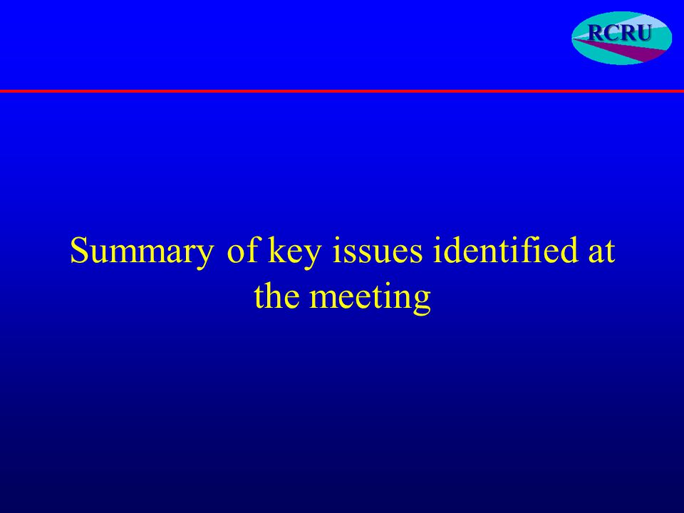 Summary of key issues identified at the meeting