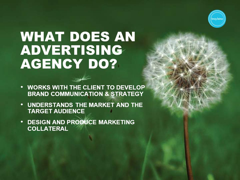 WHAT DOES AN ADVERTISING AGENCY DO.