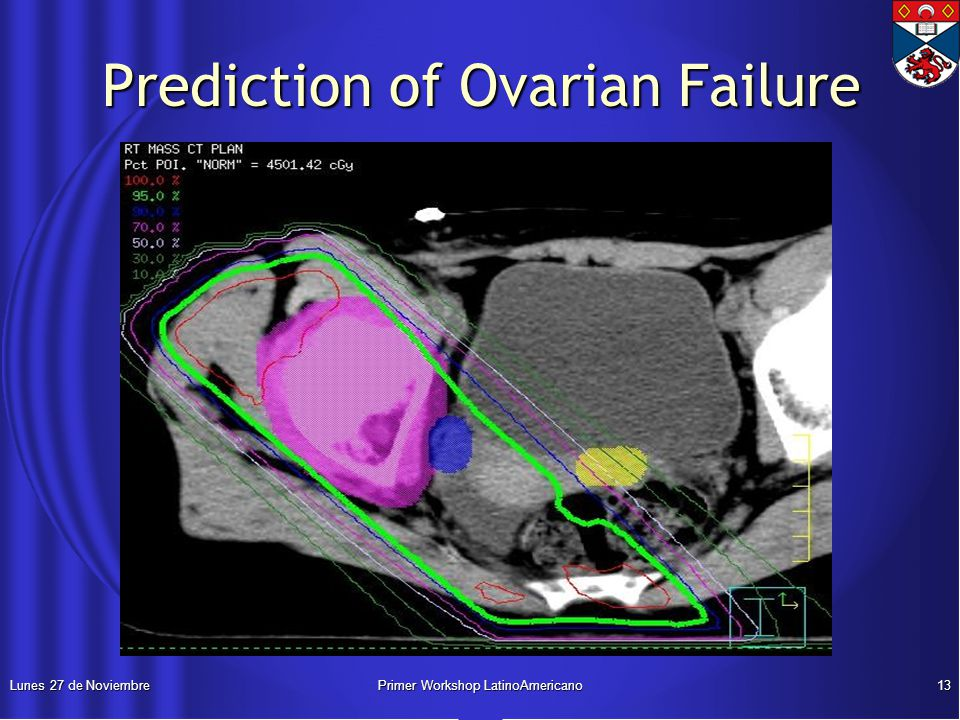 Lunes 27 de NoviembrePrimer Workshop LatinoAmericano13 Prediction of Ovarian Failure Prediction of Ovarian Failure