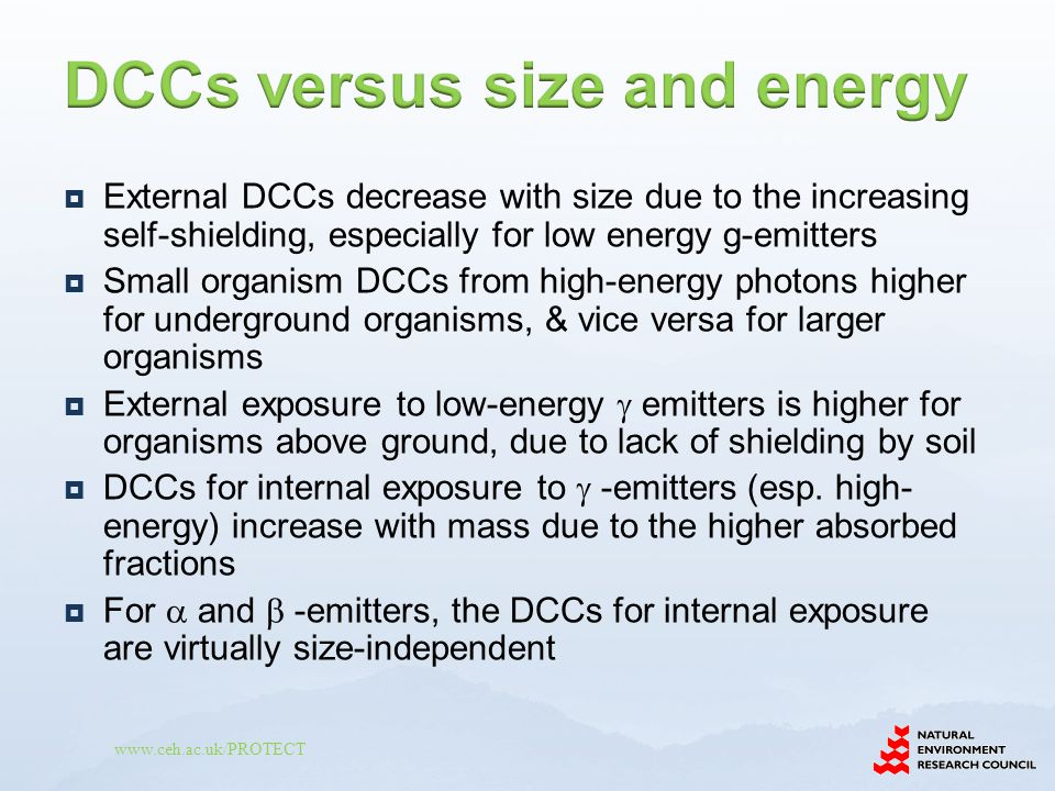 www.ceh.ac.uk/PROTECT  External DCCs decrease with size due to the increasing self-shielding, especially for low energy g-emitters  Small organism DCCs from high-energy photons higher for underground organisms, & vice versa for larger organisms  External exposure to low-energy  emitters is higher for organisms above ground, due to lack of shielding by soil  DCCs for internal exposure to  -emitters (esp.