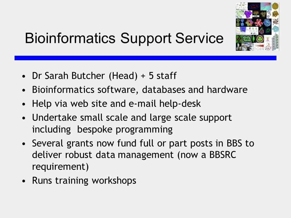 Bioinformatics Support Service Dr Sarah Butcher (Head) + 5 staff Bioinformatics software, databases and hardware Help via web site and e-mail help-desk Undertake small scale and large scale support including bespoke programming Several grants now fund full or part posts in BBS to deliver robust data management (now a BBSRC requirement) Runs training workshops