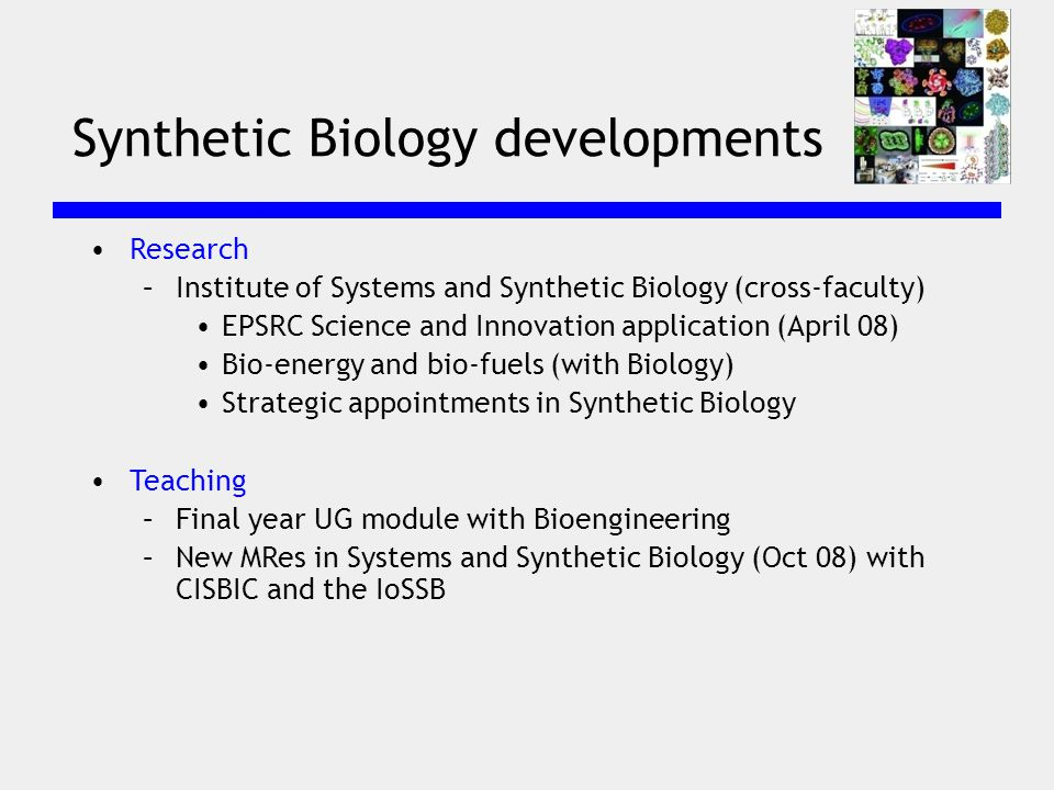Synthetic Biology developments Research –Institute of Systems and Synthetic Biology (cross-faculty) EPSRC Science and Innovation application (April 08) Bio-energy and bio-fuels (with Biology) Strategic appointments in Synthetic Biology Teaching –Final year UG module with Bioengineering –New MRes in Systems and Synthetic Biology (Oct 08) with CISBIC and the IoSSB