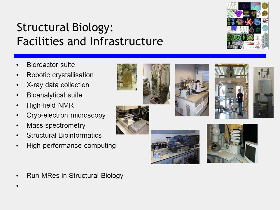 Bioreactor suite Robotic crystallisation X-ray data collection Bioanalytical suite High-field NMR Cryo-electron microscopy Mass spectrometry Structural Bioinformatics High performance computing Run MRes in Structural Biology Structural Biology: Facilities and Infrastructure