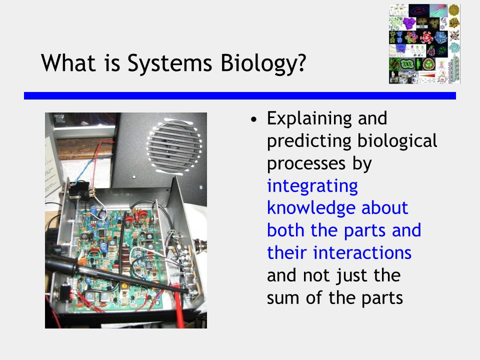 What is Systems Biology.