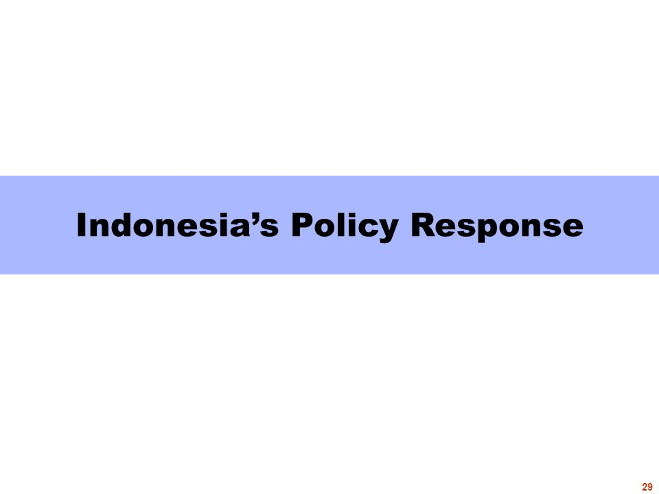 Indonesia's Policy Response 29