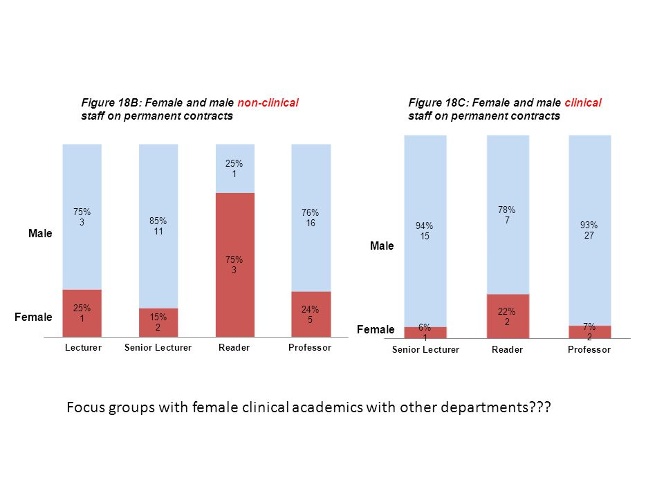 Female Male Figure 18B: Female and male non-clinical staff on permanent contracts Figure 18C: Female and male clinical staff on permanent contracts Female Male Focus groups with female clinical academics with other departments