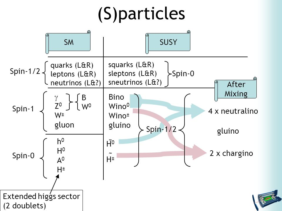 Extended higgs sector (2 doublets) (S)particles SMSUSY quarks (L&R) leptons (L&R) neutrinos (L& ) squarks (L&R) sleptons (L&R) sneutrinos (L& )  Z 0 W ± gluon BW0BW0 h0H0A0H±h0H0A0H± H0H±H0H± 4 x neutralino 2 x chargino After Mixing gluino Spin-1/2 Spin-1 Spin-0 Spin-1/2 Spin-0 Bino Wino 0 Wino ± gluino ~ ~