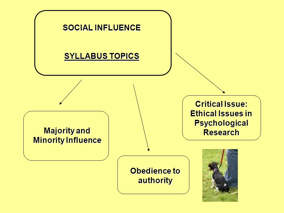 SOCIAL INFLUENCE SYLLABUS TOPICS Majority and Minority Influence Obedience to authority Critical Issue: Ethical Issues in Psychological Research