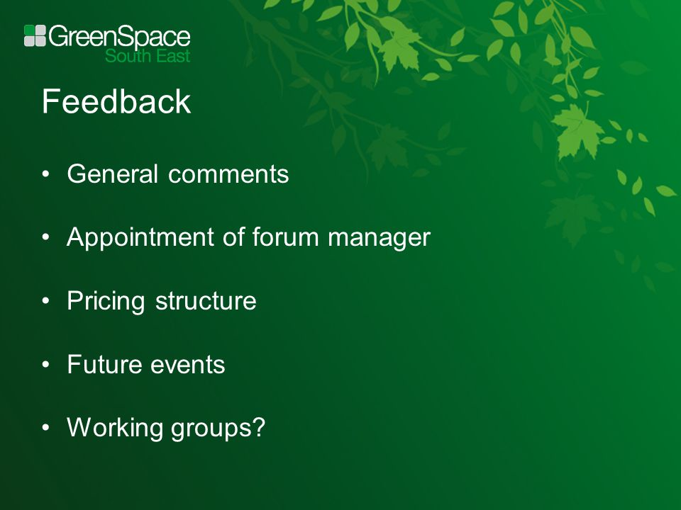 Feedback General comments Appointment of forum manager Pricing structure Future events Working groups