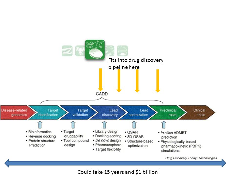 Fits into drug discovery pipeline here Could take 15 years and $1 billion!