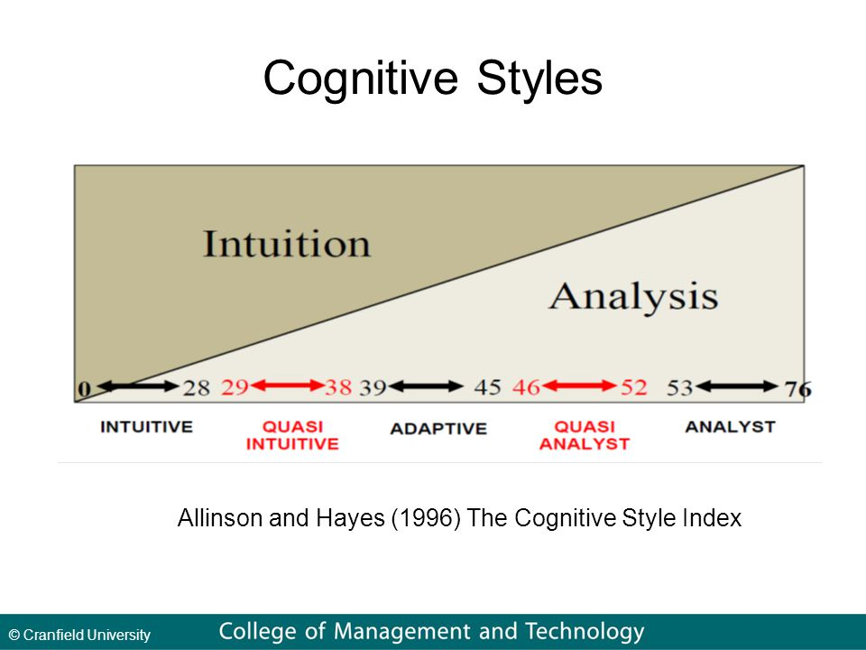 © Cranfield University Cognitive Styles Allinson and Hayes (1996) The Cognitive Style Index