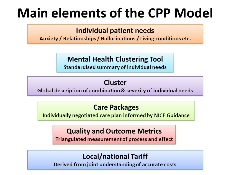 Main elements of the CPP Model Individual patient needs Anxiety / Relationships / Hallucinations / Living conditions etc.