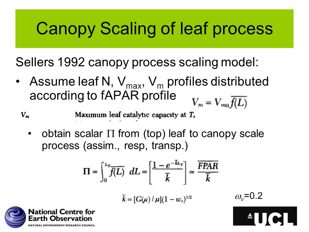 Canopy Scaling of leaf process Sellers 1992 canopy process scaling model: Assume leaf N, V max, V m profiles distributed according to fAPAR profile obtain scalar  from (top) leaf to canopy scale process (assim., resp, transp.)  v =0.2