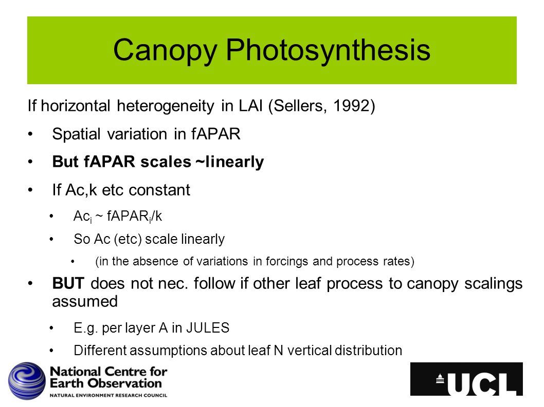 Canopy Photosynthesis If horizontal heterogeneity in LAI (Sellers, 1992) Spatial variation in fAPAR But fAPAR scales ~linearly If Ac,k etc constant Ac i ~ fAPAR i /k So Ac (etc) scale linearly (in the absence of variations in forcings and process rates) BUT does not nec.