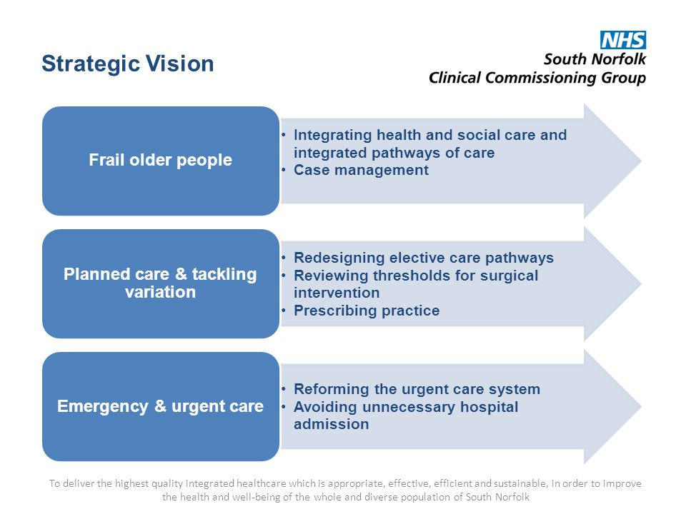 Strategic Vision To deliver the highest quality integrated healthcare which is appropriate, effective, efficient and sustainable, in order to improve the health and well-being of the whole and diverse population of South Norfolk Integrating health and social care and integrated pathways of care Case management Frail older people Redesigning elective care pathways Reviewing thresholds for surgical intervention Prescribing practice Planned care & tackling variation Reforming the urgent care system Avoiding unnecessary hospital admission Emergency & urgent care