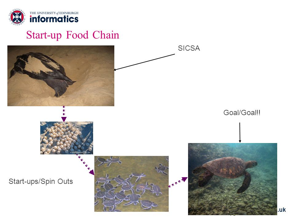 www.inf.ed.ac.uk 10 Start-up Food Chain SICSA Start-ups/Spin Outs Goal/Goal!!