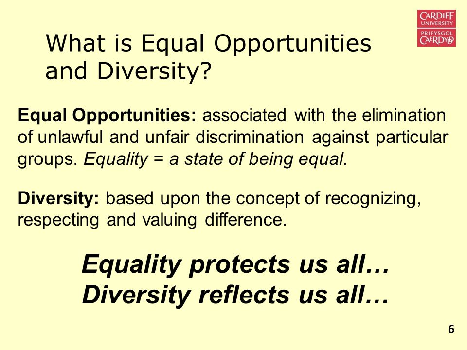 What is Equal Opportunities and Diversity.