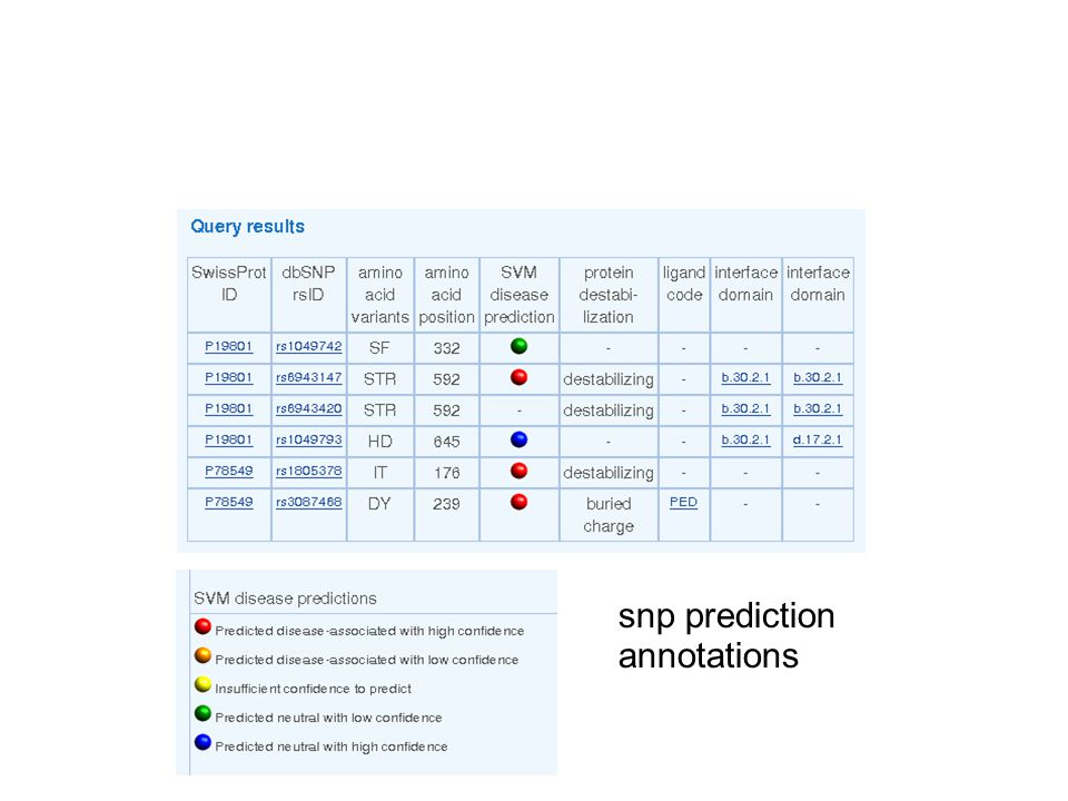 snp prediction annotations
