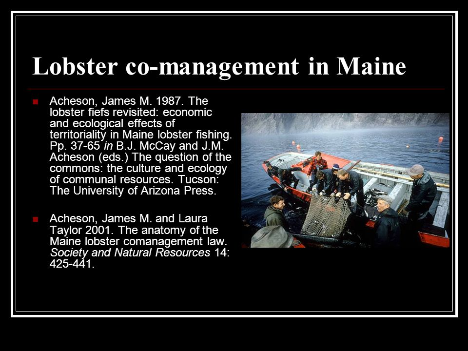 Lobster co-management in Maine Acheson, James M. 1987.