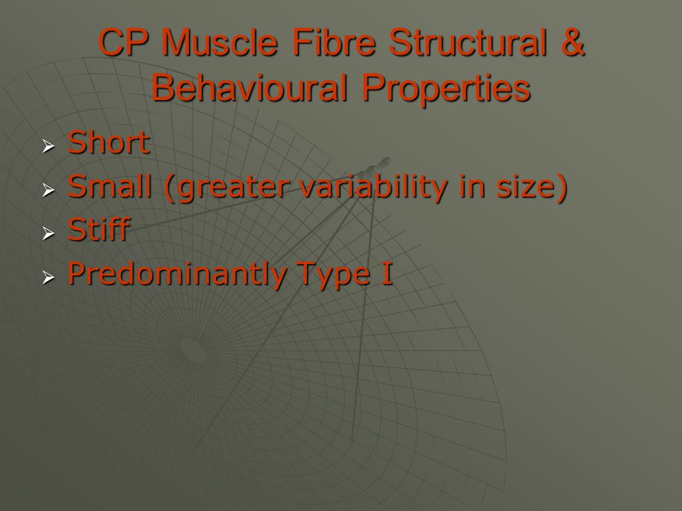 CP Muscle Fibre Structural & Behavioural Properties  Short  Small (greater variability in size)  Stiff  Predominantly Type I