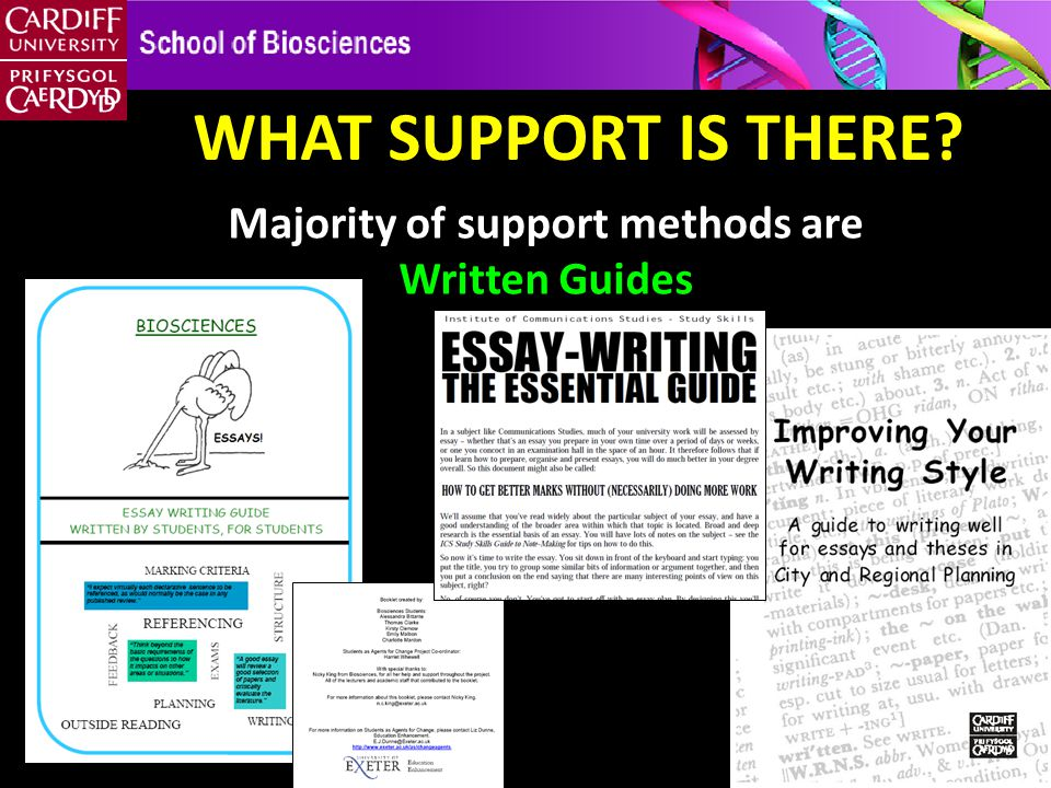 WHAT SUPPORT IS THERE Majority of support methods are Written Guides