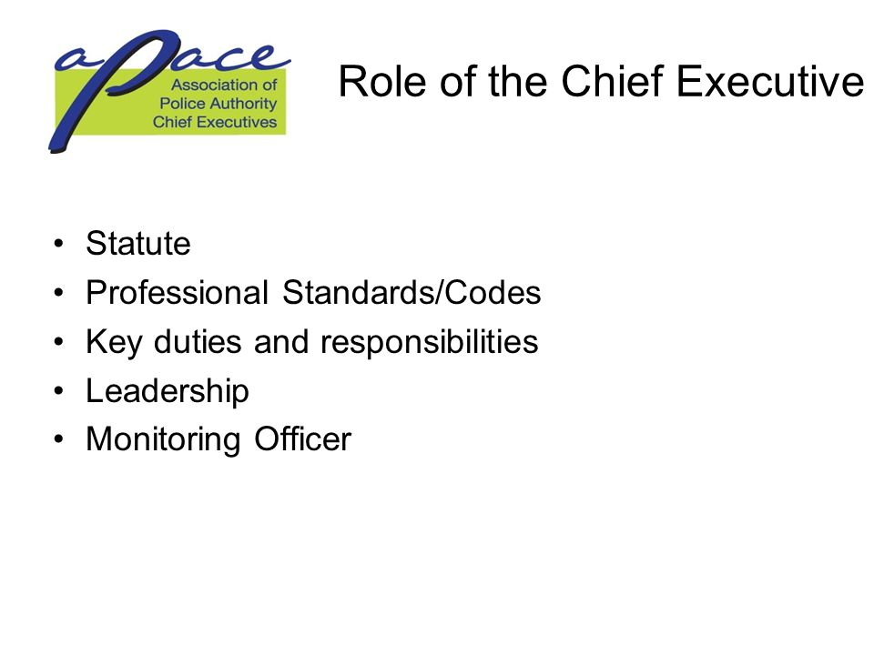 Role of the Chief Executive Statute Professional Standards/Codes Key duties and responsibilities Leadership Monitoring Officer
