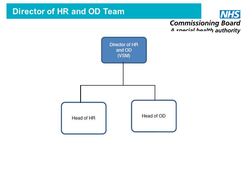 Director of HR and OD Team