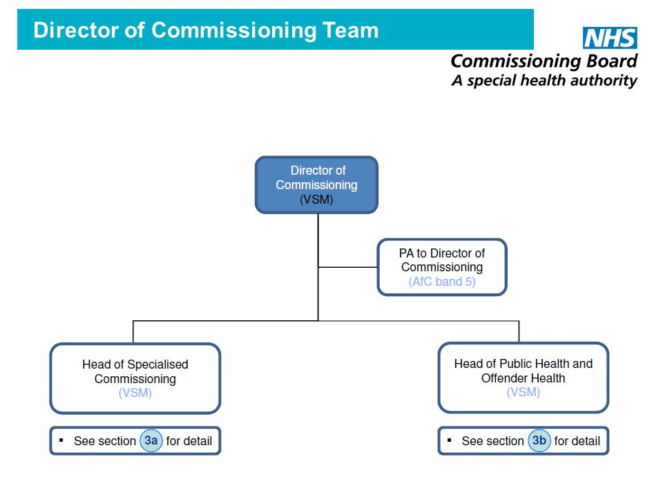 Director of Commissioning Team
