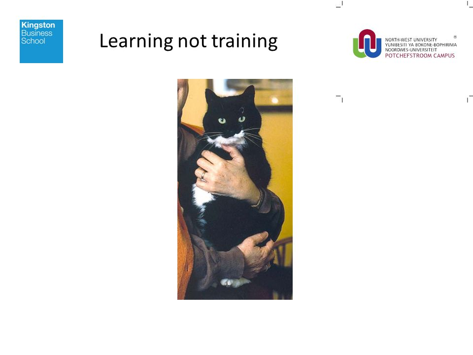Learning not training