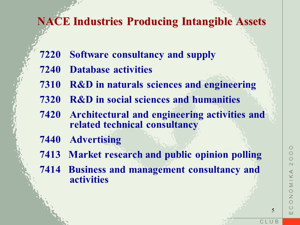 C L U B E C O N O M I K A 2 O O O NACE Industries Producing Intangible Assets 7220Software consultancy and supply 7240Database activities 7310R&D in naturals sciences and engineering 7320R&D in social sciences and humanities 7420Architectural and engineering activities and related technical consultancy 7440Advertising 7413 Market research and public opinion polling 7414 Business and management consultancy and activities 5