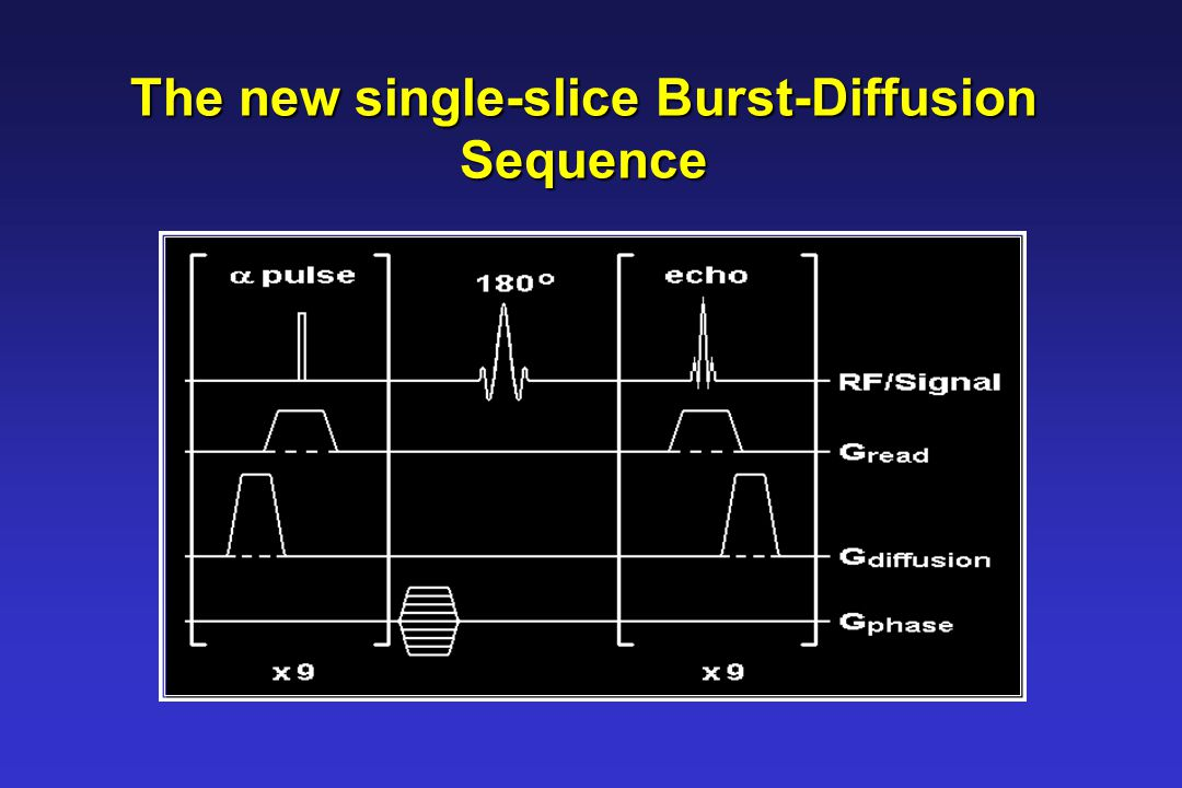 The new single-slice Burst-Diffusion Sequence