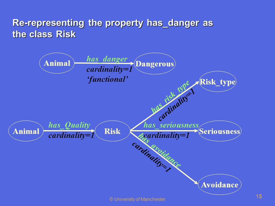 © University of Manchester 15 Re-representing the property has_danger as the class Risk Animal Dangerous has_danger cardinality=1 'functional' AnimalRisk has_Quality cardinality=1 Risk_type Seriousness Avoidance has_risk_type cardinality=1 has_seriousness cardinality=1 has_avoidance cardinality=1