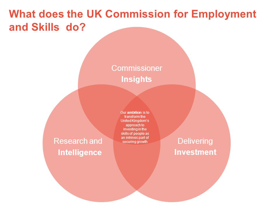 What does the UK Commission for Employment and Skills do.