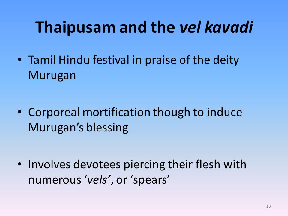 Thaipusam and the vel kavadi Tamil Hindu festival in praise of the deity Murugan Corporeal mortification though to induce Murugan's blessing Involves devotees piercing their flesh with numerous 'vels', or 'spears' 18